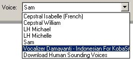 pilih voice vcalizer damayanti